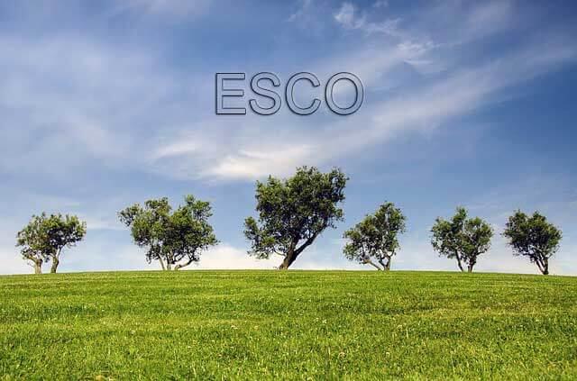 About an ESCO